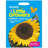 Unwins Seeds Little Growers Sunflower Sunshine Giant (30510028)