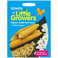 Unwins Seeds Little Growers Sweet Corn Popcorn Robust (30510021) Seeds for Kids