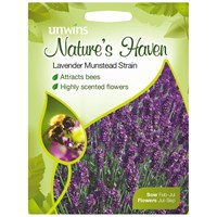 Unwins Seeds Natures Haven Lavender Munstead Strain (30210404) Flower Seeds