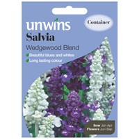 Unwins Seeds Salvia Wedgewood Blend (30210188) Flower Seeds