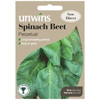 Unwins Seeds Spinach Beet Perpetual (30310204)