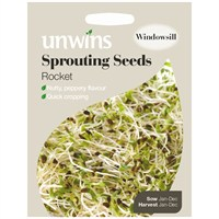 Unwins Seeds Sprouting Seeds Rocket (30310216)