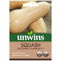 Unwins Seeds Squash Butternut Harrier F1 (30310554)
