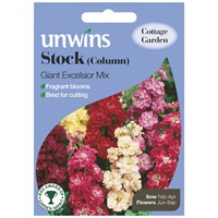 Unwins Seeds Stock Column Giant Excelsior Mix (30210192)