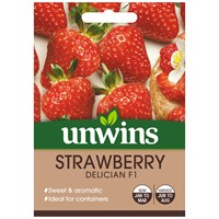 Unwins Seeds Strawberry Delician (30310556)