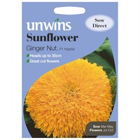 Unwins Seeds Sunflower Ginger Nut F1 (30210197)