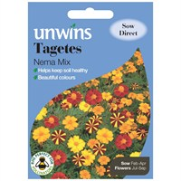 Unwins Seeds Tagetes Nema Mix (30210599)