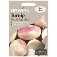 Unwins Seeds Turnip Purple Top Milan (30310258)