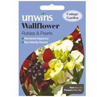 Unwins Seeds Wallflower Rubies & Pearls (30210480)