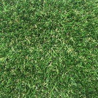 Verdegarden Artificial Grass