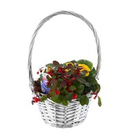 Wicker Silver Basket With Handle - Classic Range Small - Christmas Outdoor Planter