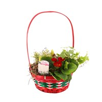 Wicker Value Range - Red/Green Stripe Basket With Handle - Christmas Outdoor Planter