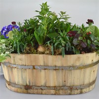 Wooden Oval Barrell Large Bedding Planter