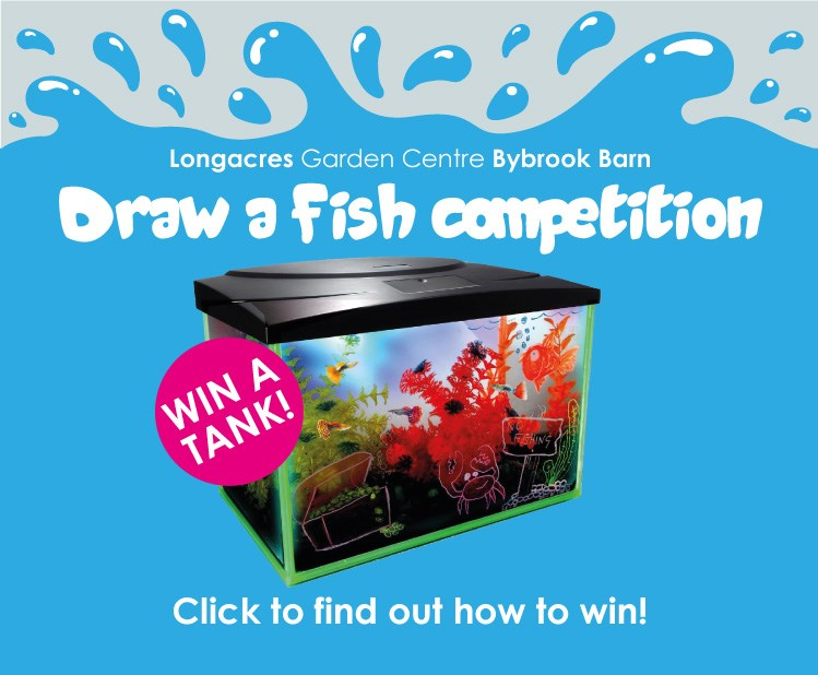 Win A Fish Tank Competition