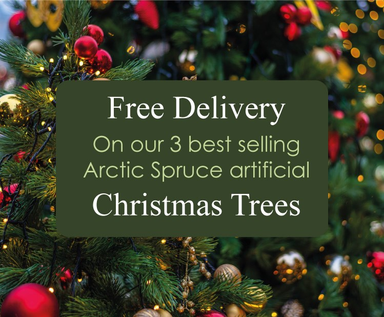 free-delivery-arctic-spruce-2018