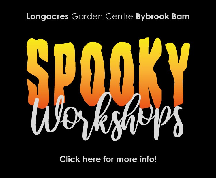 bybrook-halloween-events-2019